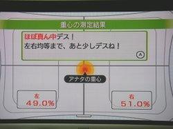 WiiFit2.jpg