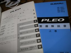 pleo2.jpg