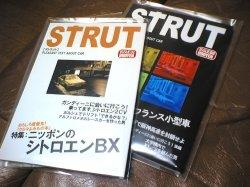 strut.jpg